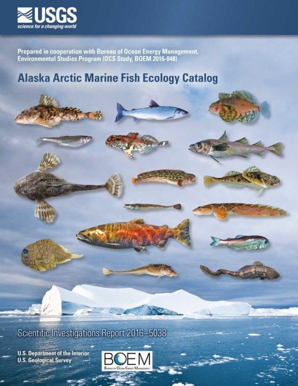 Federal report includes new fish species the cordova times for Alaska fish species