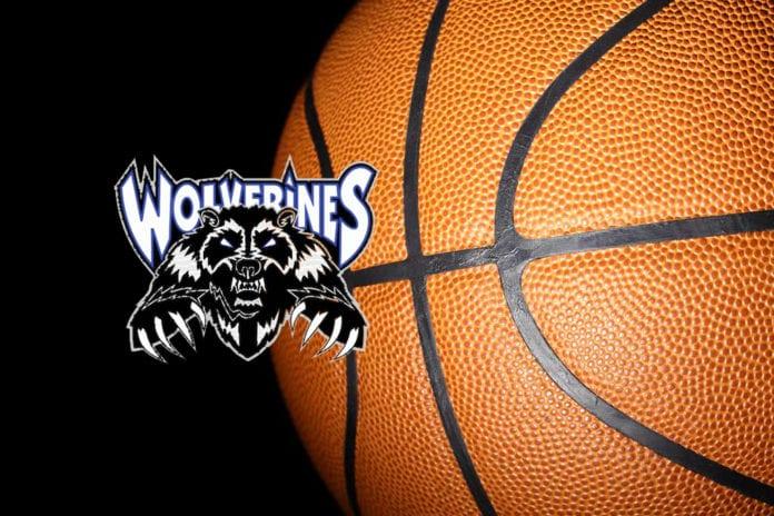 wolverine basketball