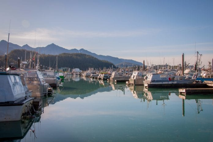 Snug in the harbor: The majority of Cordova's gillnet fleet have put their boats away for the winter in the Cordova Boat Harbor, wrapping up the 2017 commercial salmon fishing season. Photo by Cinthia Gibbens-Stimson/The Cordova Times