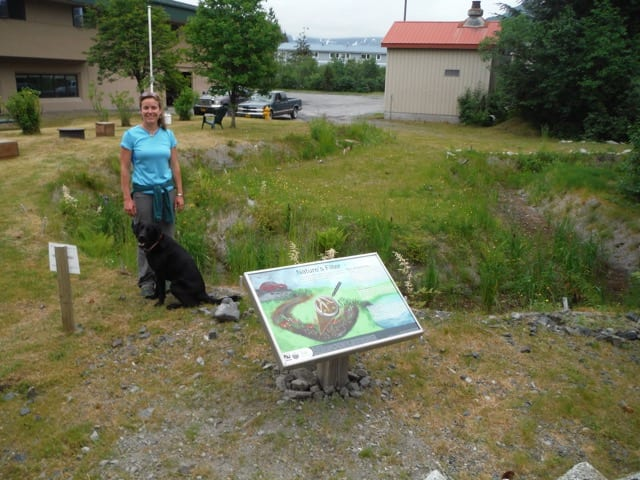 Kate Morse in front of the bioswale planted with native wetlands plants, behind Cordova Community Medical Center in June 2015. Photo courtesy of Copper River Watershed Project
