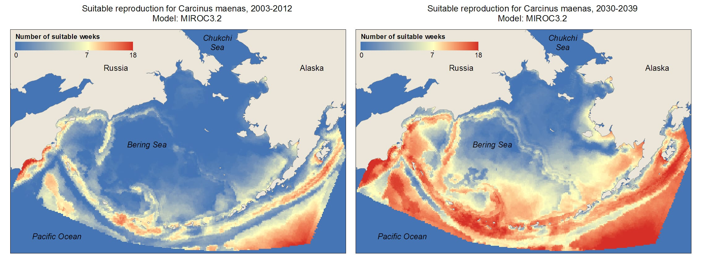 The temperature and salinity in the Bering Sea, North Pacific and Gulf of Alaska, across all depths, will become even more habitable for invasive green crabs by the 2030s (Graphic courtesy of ACCS).