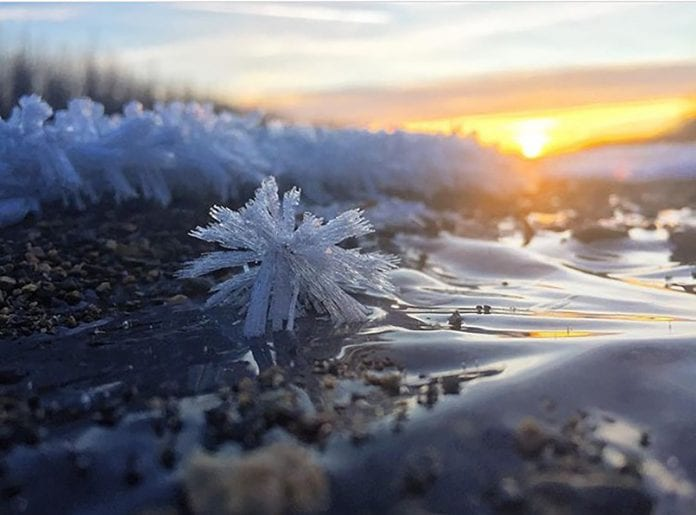 Frost Formation, taken on a walk down Ibek River on Dec. 22.  Photo by Tyler Quiring of Cordova.