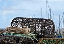 Coastal Pots Trap Coast Lobster Crab Fishery