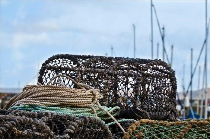 Coastal Pots Trap Coast Lobster Crab Fishery