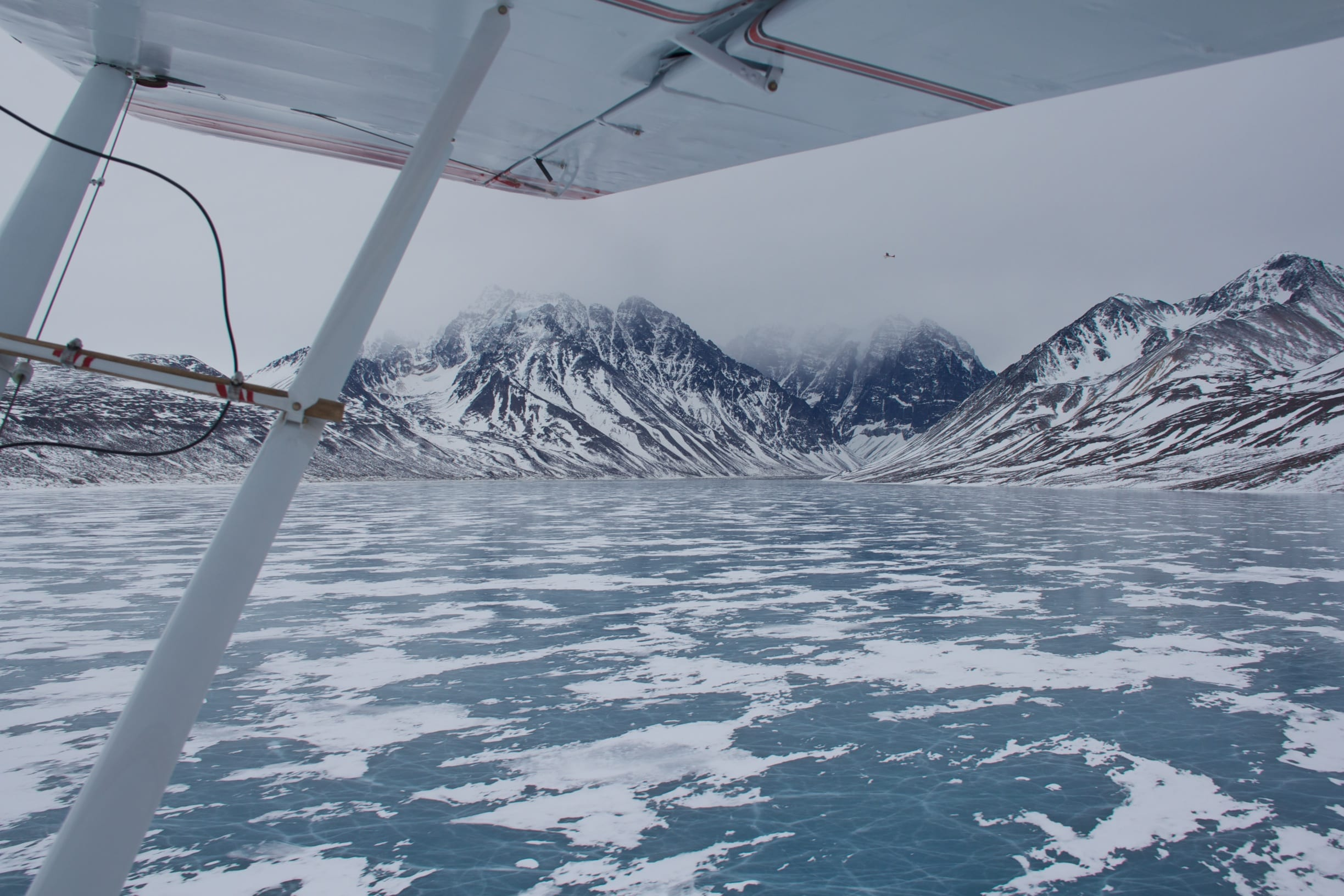 Caption:  National Park Service planes scan Lake Clark National Park and Preserve for wolves (Photo by Ashley Stanek / National Park Service).