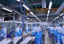 Fish processing plant