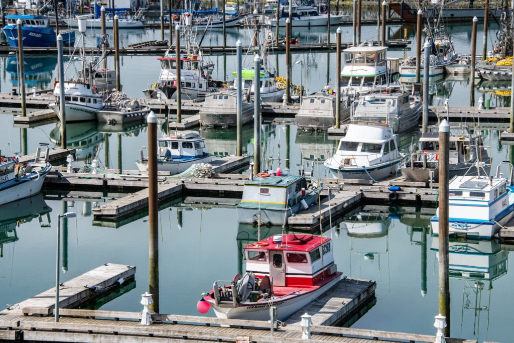 Fishing vessels docked in Cordova Harbor. (Aug. 5, 2019) Photo by Zachary Snowdon Smith/The Cordova Times