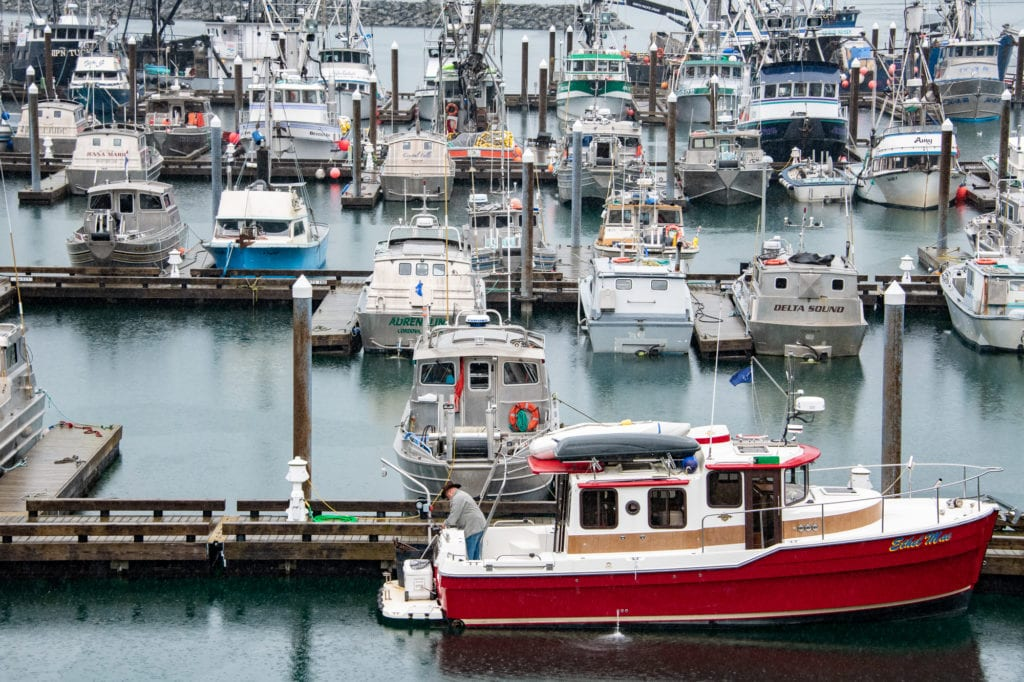 Fishing vessels docked in Cordova Harbor on Sept. 12, 2019. Photo by Zachary Snowdon Smith/The Cordova Times