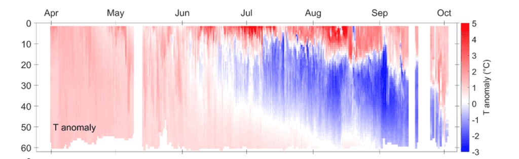Temperature anomalies as seen by the Prince William Sound Autonomous Profiler in central Prince William Sound this summer. The cold anomaly below the hot surface layer during the summer is likely an indication that the surface layer is thinner than average.