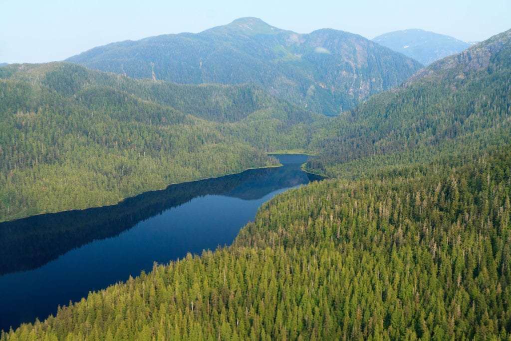 Tongass National Forest. Photo courtesy of Alan Wu/Flickr