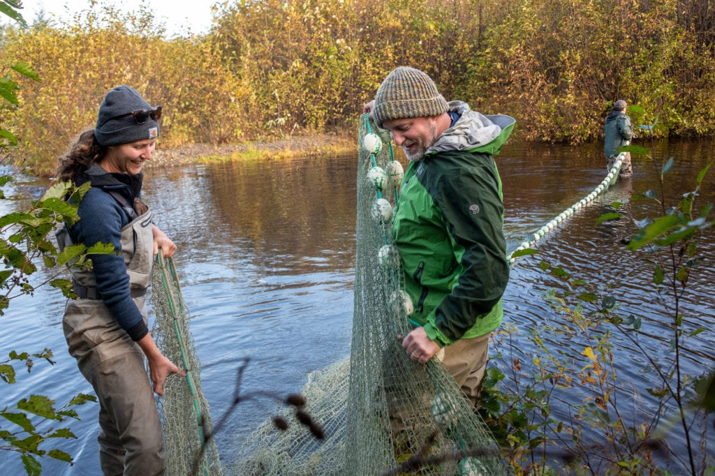 From left: Rachel Ertz, Tommy Sheridan and Ken Hodges prepare to capture salmon at Holbrook Pond. (Oct. 2, 2019) Photo by Zachary Snowdon Smith/The Cordova Times