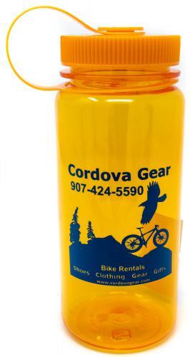 BPA-free 16 oz. water bottle